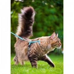Zestaw spacerowy dla kota - szelki ze smyczą - odblaskowy