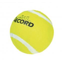 Piłka tenisowa dla psa Record